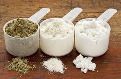 Hemp and whey protein powder Stock Photos