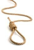 hempen веревочка петли Стоковая Фотография RF