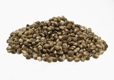 Hempseed -isolated hill. Formalized hill from seeds of cannabis sativa L Stock Photography