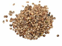 Hempseed isolated on white Royalty Free Stock Photography