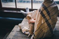 Hemtrevlig morgon med den söta valpen och kaffe royaltyfria bilder
