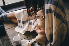 Hemtrevlig morgon med den söta valpen och kaffe royaltyfri foto