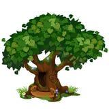 Hemtrevlig skogkoja i det gamla trädet som isoleras på vit bakgrund Det sagolika trädet i parkera Landskap och djurliv stock illustrationer