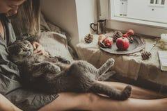 hemtrevlig utgångspunkt Kvinna med gulligt kattsammanträde i säng vid fönstret Arkivbild