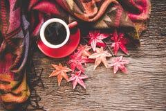 Hemtrevlig vinterlönnbakgrund, röd kopp av varmt kaffe med marshmallowen, värme den stack tröjan på gammal träbakgrund, royaltyfri foto