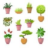 Hemväxter och dekorativa houseplants blommar i krukor - vektor royaltyfri illustrationer