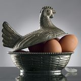 Hen. Silver hen laying on eggs Stock Photography