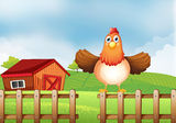 A hen above the fence with a wooden house at the back Royalty Free Stock Photography