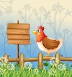 A hen above a wooden fence facing a wooden signboard Stock Photos