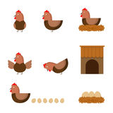 Hen chicken action story, hen house and haystack illustration Stock Photo