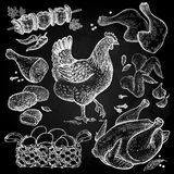 Hen and chicken dishes white chalk on a blackboard. Royalty Free Stock Images