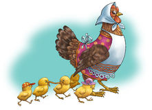 The hen and chickens. The hen and yellow chickens walk Royalty Free Stock Photography
