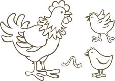 Hen with chickens. Hen with two chickens, vector illustration. Layers are managed and arranged for easy editing Royalty Free Stock Image
