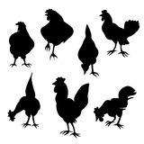 Hen and cock silhouettes Royalty Free Stock Photos