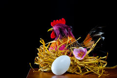 Hen and  easter eggs Royalty Free Stock Image