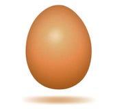Hen egg. Royalty Free Stock Photo