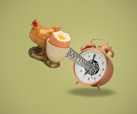 Hen Egg cup coming out of alarm clock Royalty Free Stock Photography