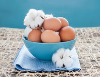 Hen eggs in bowl and cotton flowers Stock Image