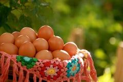 Hen Eggs i den utsmyckade korgen Arkivbild