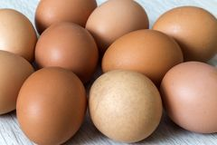 Hen eggs on kitchen table background. Healthy organic food, delicious meal, cholesterol and diet concept.  stock images