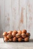 Hen Eggs na bandeja do fio de galinha com espaço da cópia Foto de Stock
