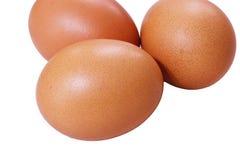 Hen Eggs på vit bakgrund royaltyfri fotografi