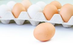 Hen eggs in paper Pane on white background Royalty Free Stock Photos