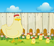 A hen and the four chicks Royalty Free Stock Photography