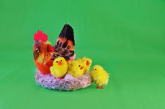 Hen with four chicks Royalty Free Stock Images