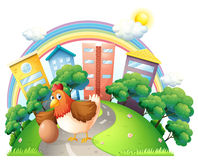 A hen and her egg at the road Royalty Free Stock Photos