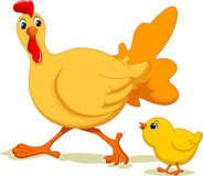 Hen and her son Stock Photo