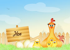 The hen Royalty Free Stock Images