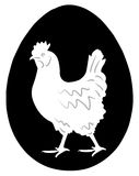 Hen In The Egg Stock Images