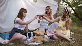 Hen party outdoors. Three pretty woman have a picnic, sitting on the plaid, drinking red wine. Cheers. White sheet. Hanging on a trees stock video footage