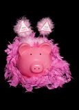 Hen party piggy bank. Cutout Royalty Free Stock Photography
