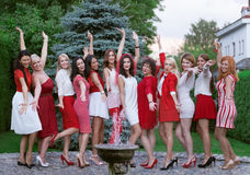 Hen party: white and red Stock Images