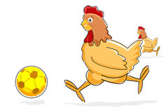 Hen playing with soccer ball Royalty Free Stock Photography