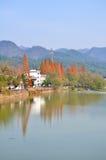 Hen River Imagen de archivo
