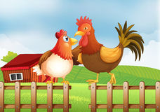 A hen and a rooster above the fence with a wooden house at the b Royalty Free Stock Images