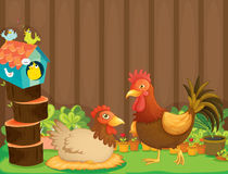 A hen and a rooster beside the bird house Stock Image