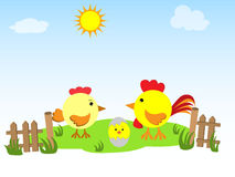 Hen, rooster and chicken on the green grass. Vector illustration for the children's websites, magazines. It can be used on labels of products and packing of Royalty Free Stock Photography