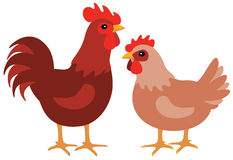 Hen and rooster. A graphic hen and rooster couple on white Royalty Free Stock Photos