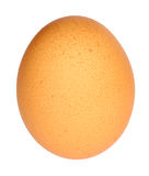Hen's egg Stock Images