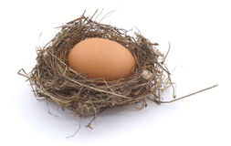 Hen's egg in a nest. On white background Royalty Free Stock Photography