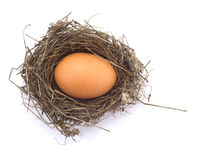 Hen's egg in a nest. On white background Stock Photos