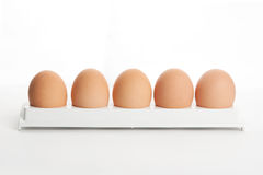 The hen's eggs in egg holder Royalty Free Stock Photos