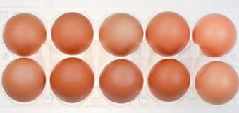 Hen's eggs in holder Stock Photo