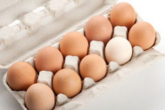 The hen's eggs in pack Royalty Free Stock Photography