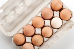 The hen's eggs in pack Royalty Free Stock Photo