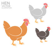 Hen. Set Royalty Free Stock Images